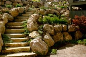 steps2 2